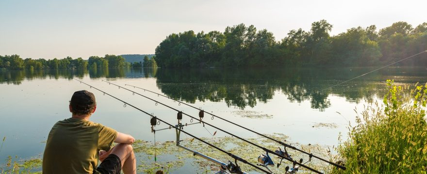 Carp Fishing For Beginners: What To Look For When Choosing A Carp Fishing Rod
